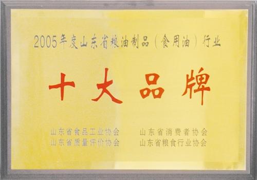 200501十大品牌